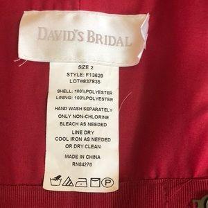 David's Bridal Dresses - DAVIDS BRiDAL sz 2 red bridesmaid dress apple